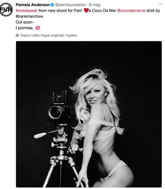Pamela Anderson e Julian Assange fidanzati, lei conferma: