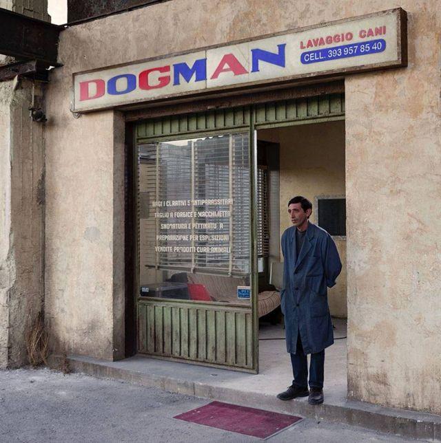 Festival Cannes 2018, Matteo Garrone presenta il film Dogman